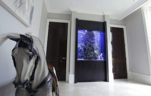 Saltwater built in wall tank