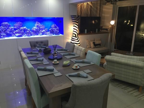 in wall fish tank