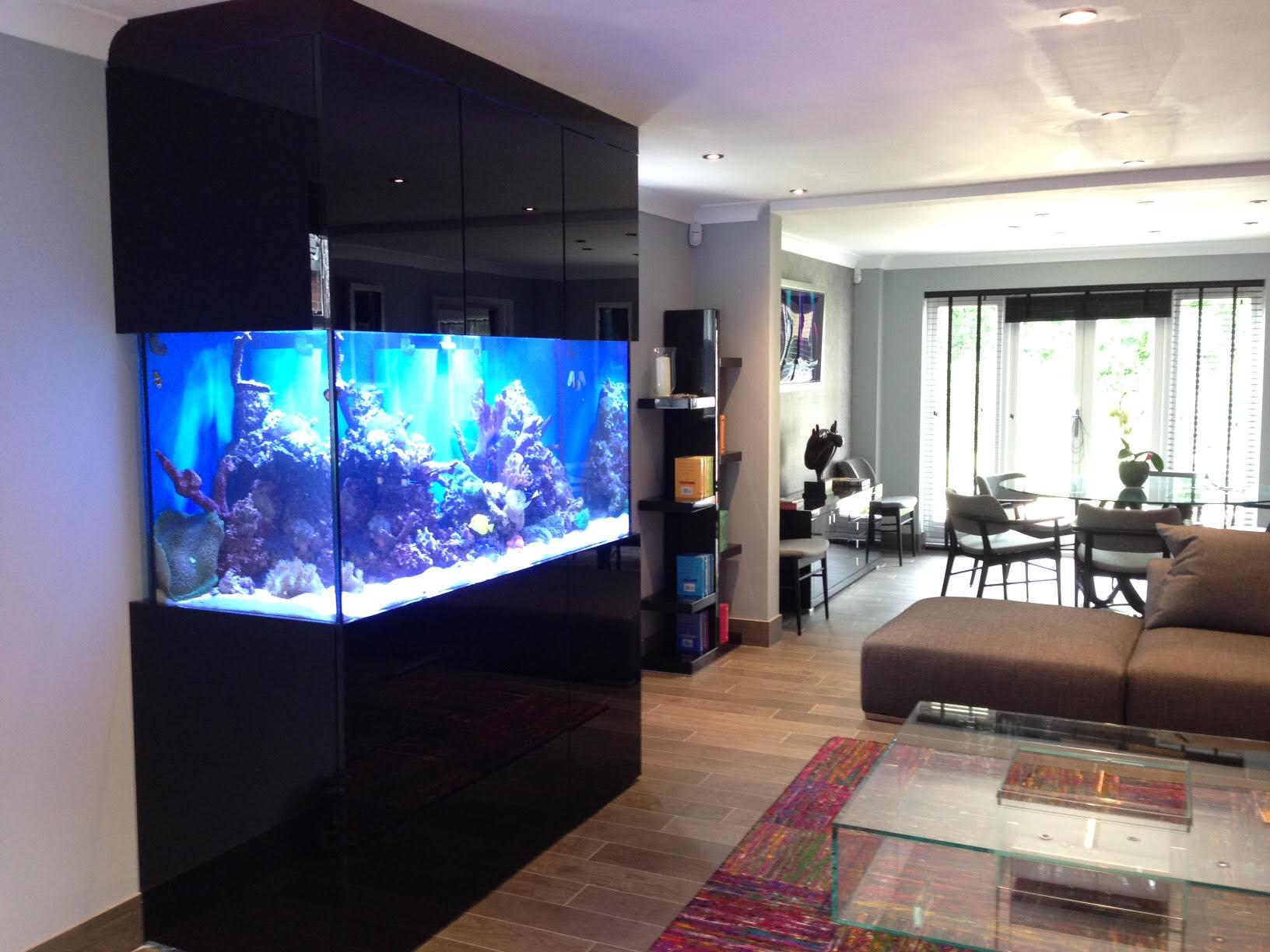 Custom designer aquarium in derbyshire oceanlife aquatics for Fish tank wall