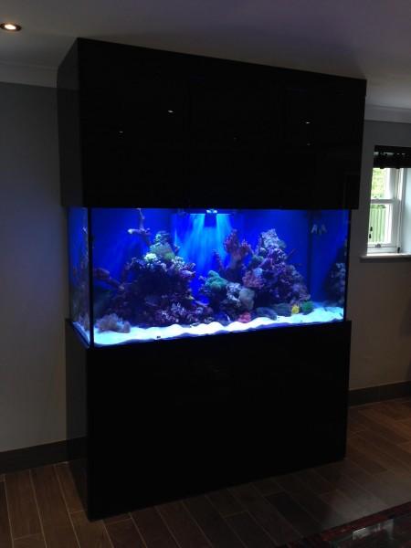 Custom designer aquarium