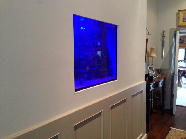 Aquarium installation service