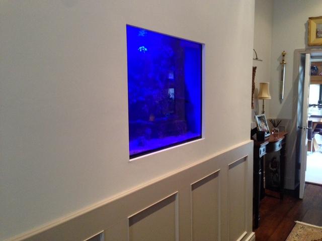 Aquarium installation service