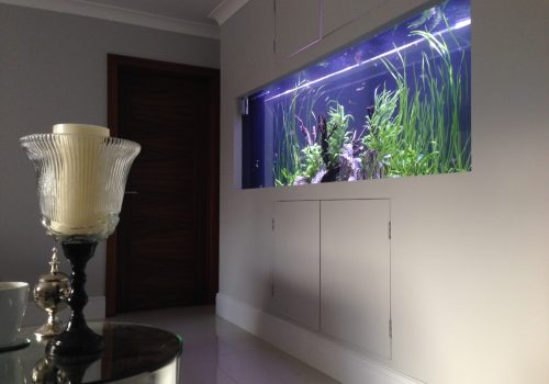 Wall aquarium installer
