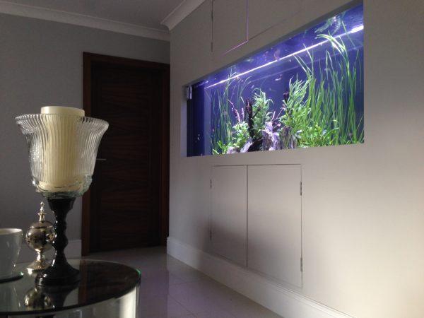 Wall aquarium installer