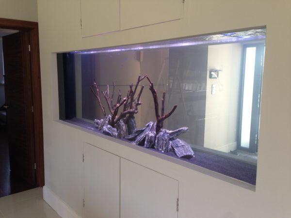 In wall fish tank design