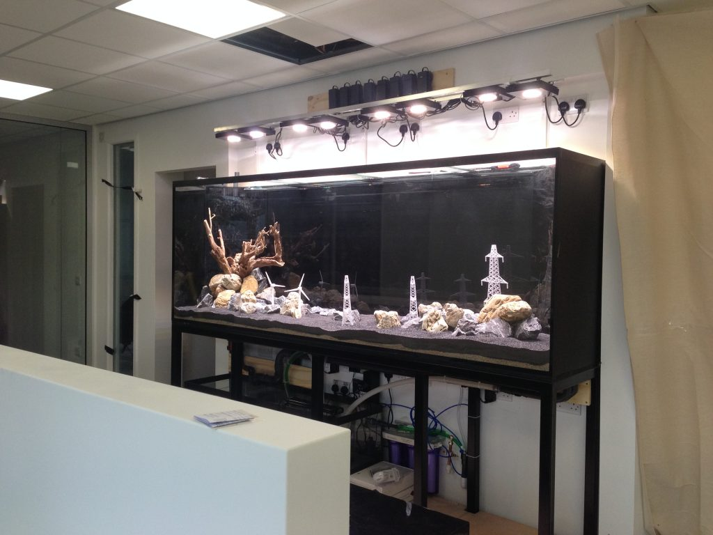 Custom aquarium Build in Preston, Lancashire