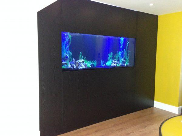 Bespoke fish tank
