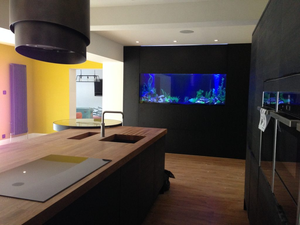 Custom aquarium Build in Leeds