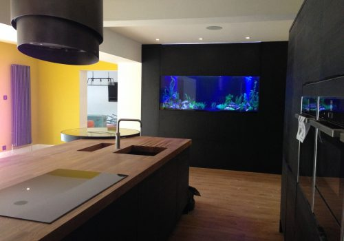 Custom aquarium Build in Leeds