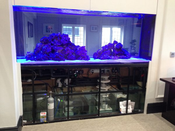 Aquarium installer