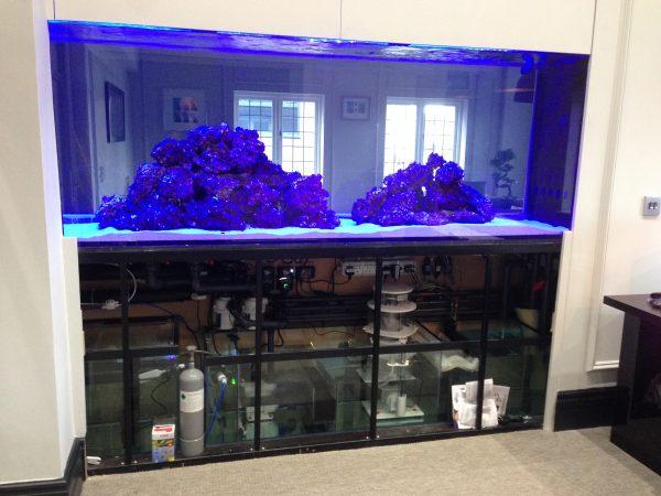Aquarium installer