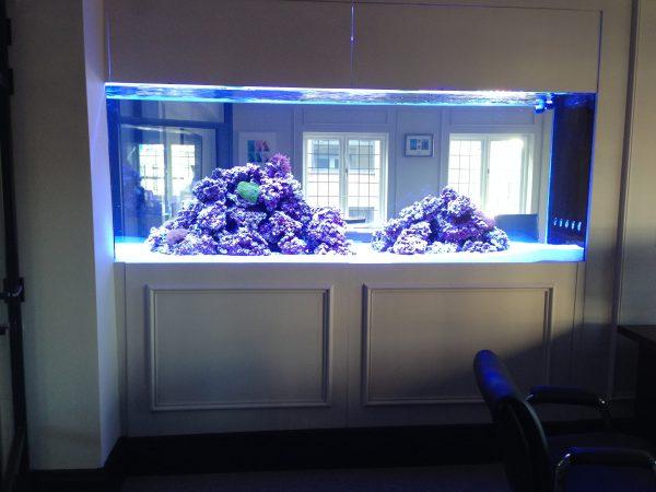 Fish tank installer