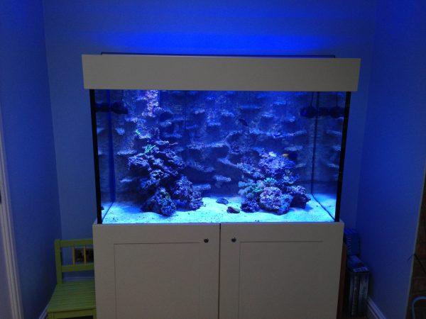 Aquarium install