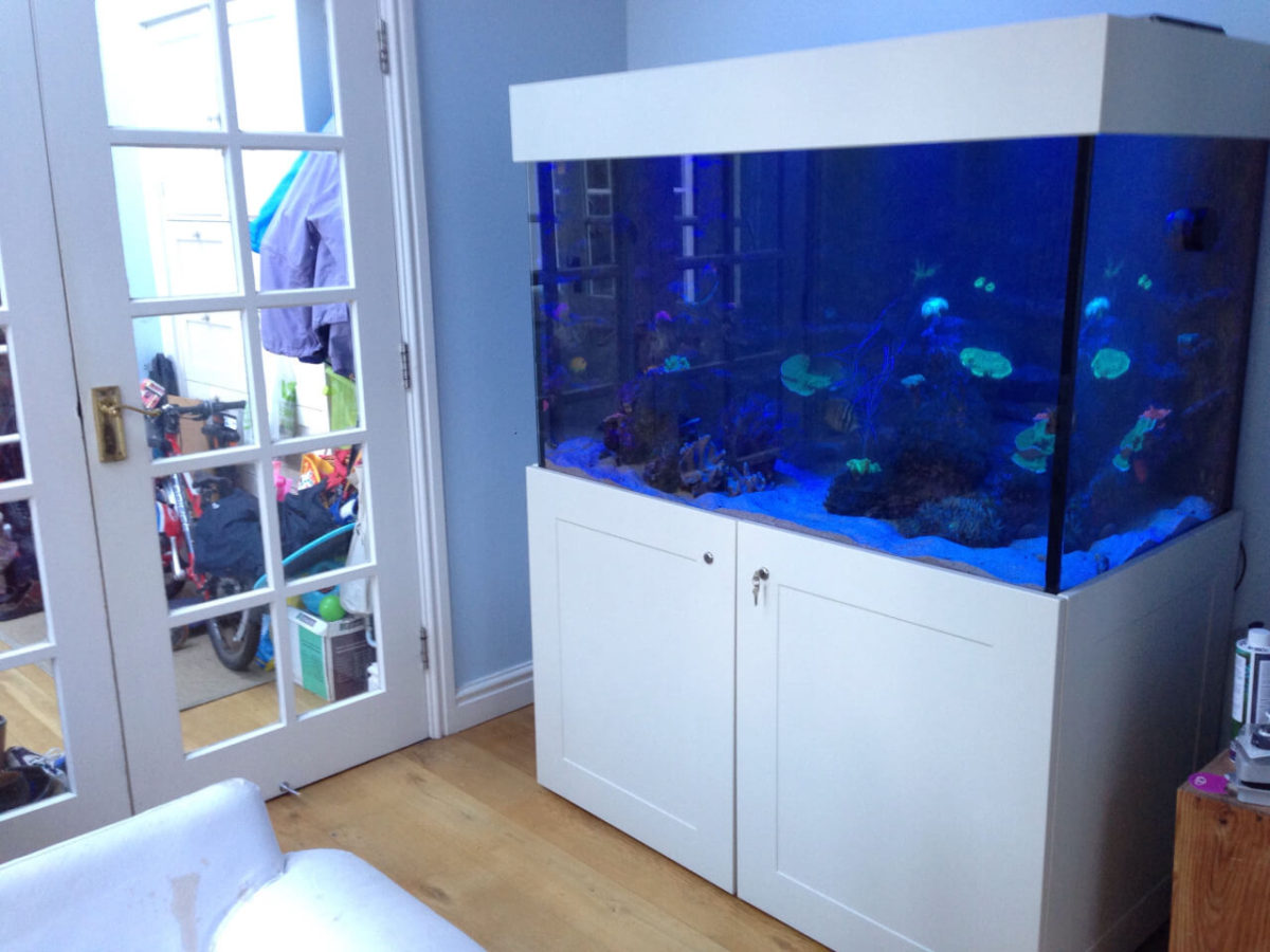 Bespoke Aquarium in Manchester