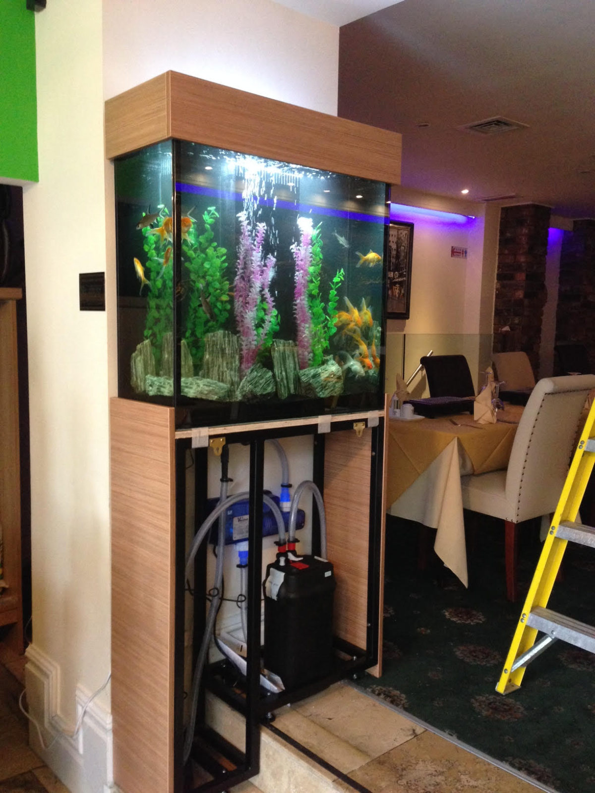 Aquarium Installation Service in Newcastle