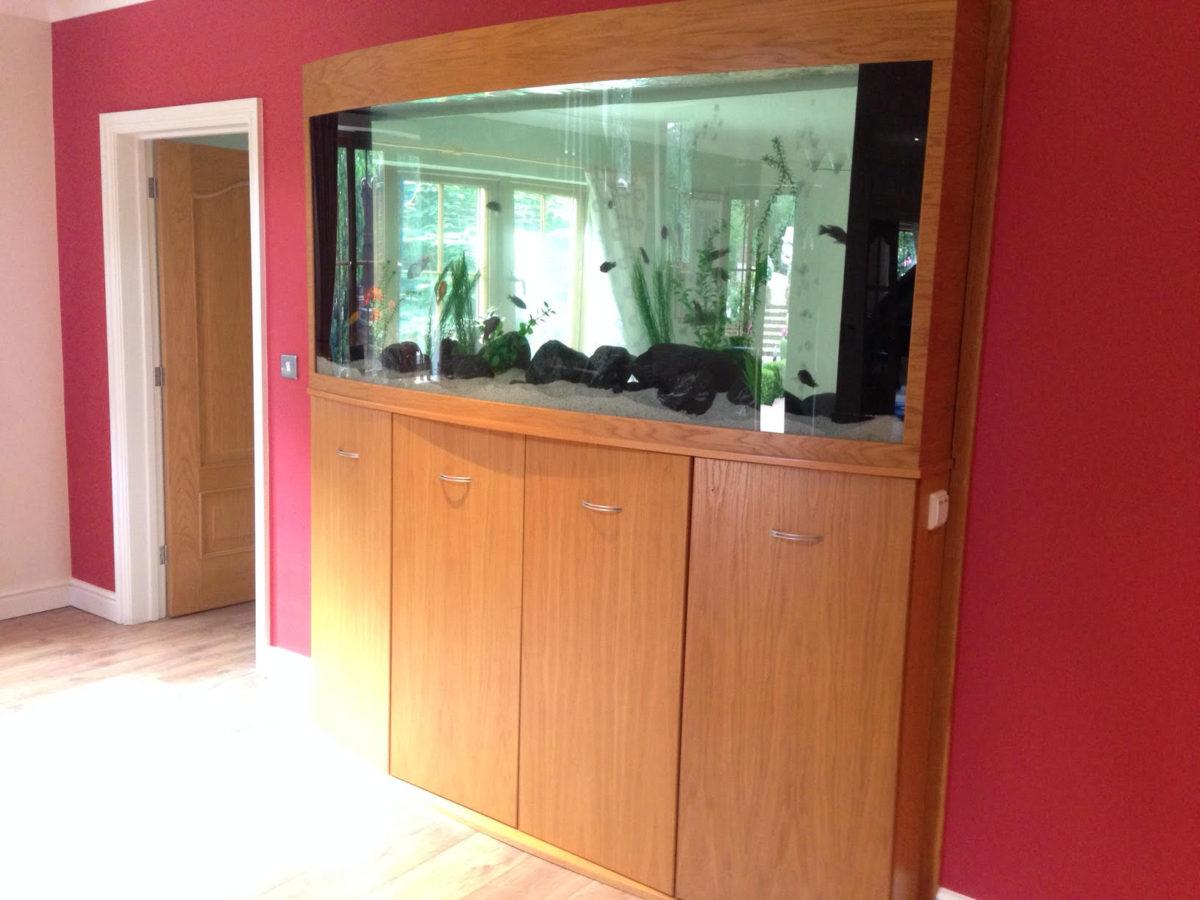 Aquarium cleaning service in Derbyshire