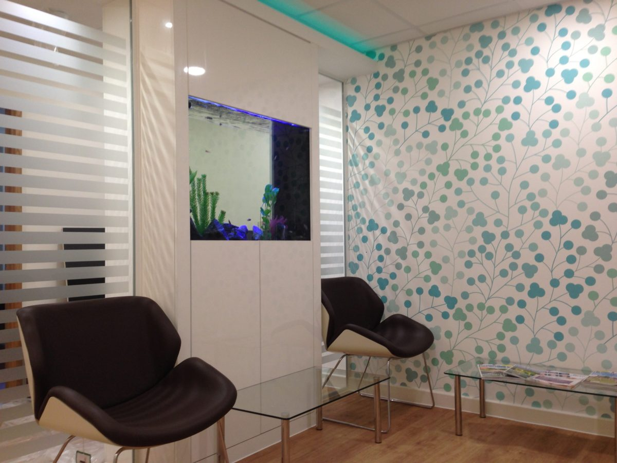 How a Wall Fish Tank Can Benefit Your Commercial Environment
