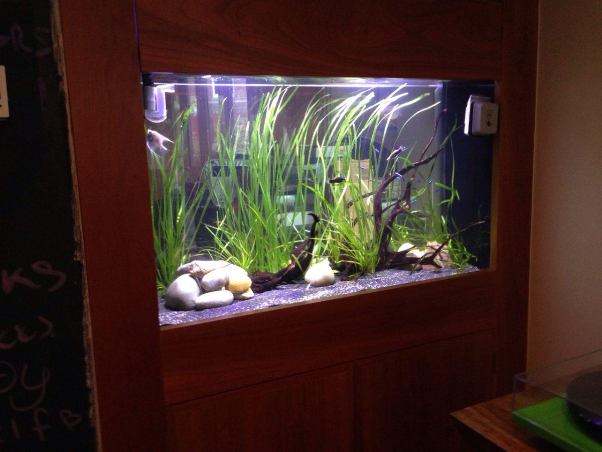 Custom Aquarium Lighting
