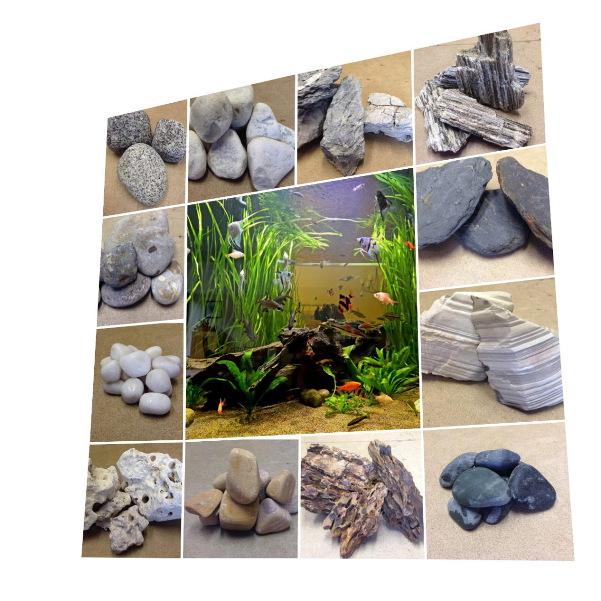 Aquarium Maintenance Rock Decorations