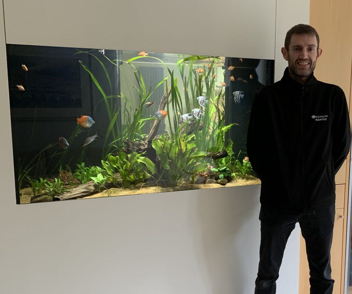 Ocean Life Aquatics Welcomes New Technician